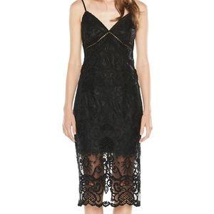 Bardot Embroidered Lace Slip Dress NEW